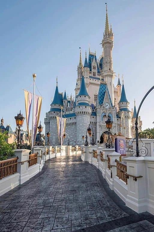 10 Things to Buy Before Disney World to Save Money